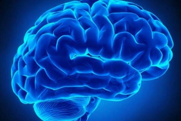 تکمیل رباتهای تشخیص و درمان ضایعات عصبی