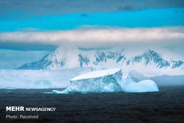 ضرورت ورود به معاهده تحقیقات جنوبگان و پژوهش در قطب جنوب