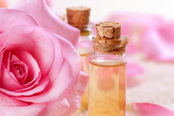 خواص روغن گل محمدی چیست؟