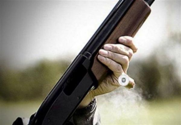 زخمی شدن 7نفر با شلیک سلاح ساچمه زنی