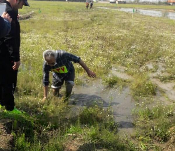 خبرنگاران برگزاری مسابقه گل نوردی در روستای دهشال آستانه اشرفیه