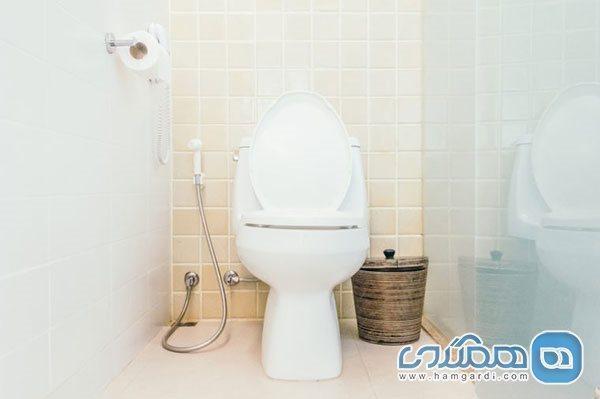 وقتی جواهرات از کاسه توالت آلوده تر هستند