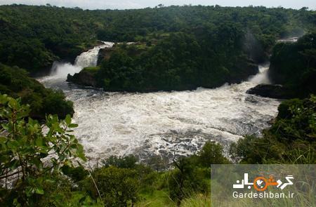 آشنایی با رود نیل؛ رودی که از 10 کشور آفریقا می گذرد ، عکس